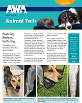 AWA Newsletter Fall 2017
