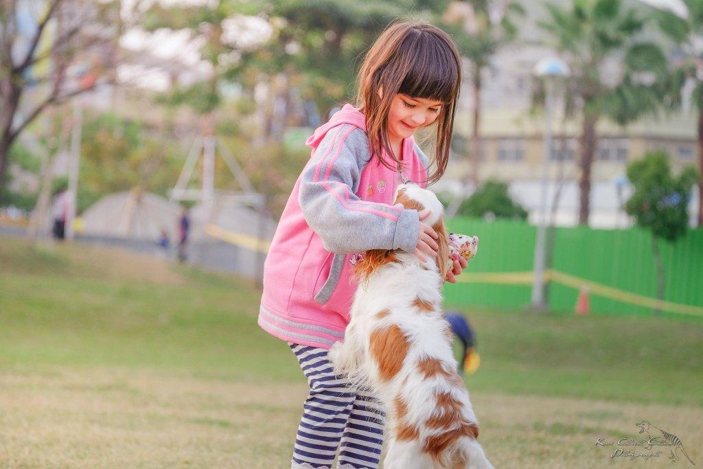 Adopt a Dog - Animal Welfare Association of NJ